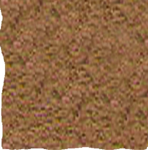 Color Autumn Beige- 3020